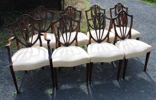 1960's Mahogany Set 8 Wheatcheaf Design Dining Chairs with Pop Out Seats (1 of 3)