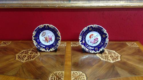 Pair of Ridgways Porcelain Decorated Botanical Plates (1 of 5)