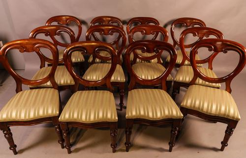 Set of 12 Victorian Mahogany Balloon Back Dining Chairs fully restored (1 of 11)