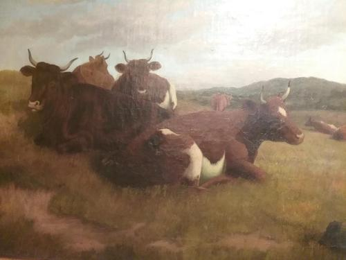 Cattle at rest, by John Crane (1 of 3)