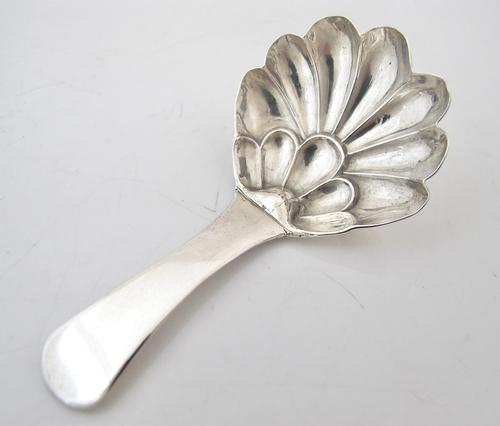 Rare George III Flower Bowl Silver Caddy Spoon Ledsom Vale & Wheeler Birmingham 1830 S2213 (1 of 4)