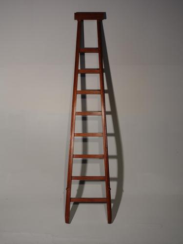Good Early 20th Century Set of Mahogany Framed Libray Ladders (1 of 4)