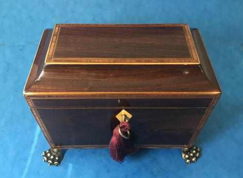 Regency Black Walnut Sarcophagus Twin Section Tea Caddy (1 of 11)