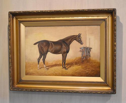 Monarch, Oil Painting of a Horse by William Eddowes Turner (1 of 8)