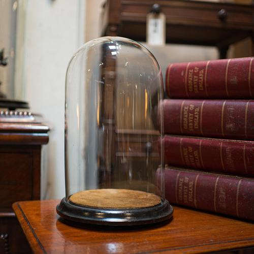 Antique Taxidermy Showcase, English, Glass, Leather, Display Dome, 19th Century (1 of 9)