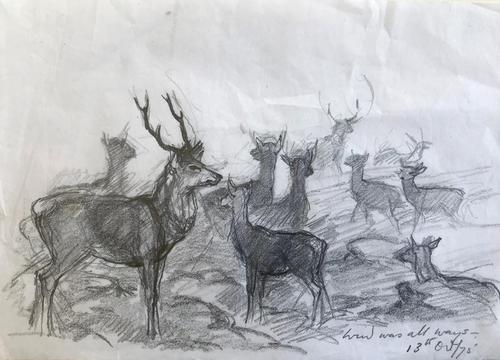 Original Pencil Drawing 'the Wind Was All Ways' by Barbara Lady Brassey 1911-2010. Dated 13th Oct75 (1 of 1)