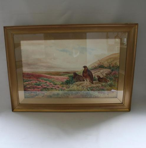 Pair of Gilt Framed Watercolour Paintings of Grouse (1 of 9)
