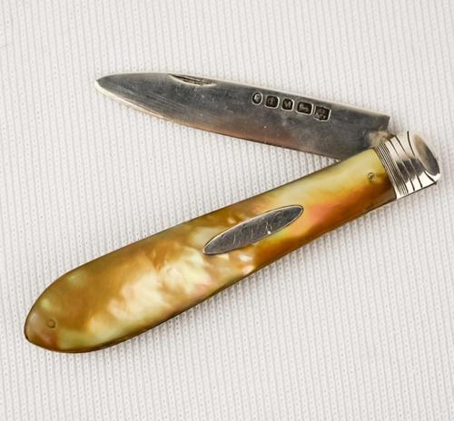 Silver Fruit Knife 1879-80 Martin Hall & Co Sheffield (1 of 4)