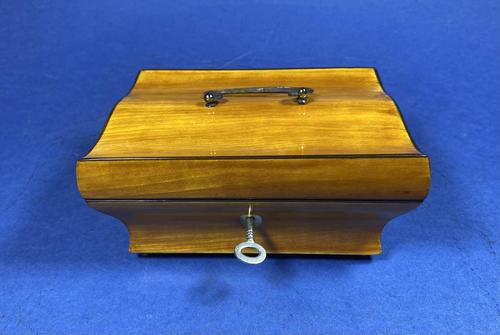 French 19th Century Satinwood Box (1 of 15)
