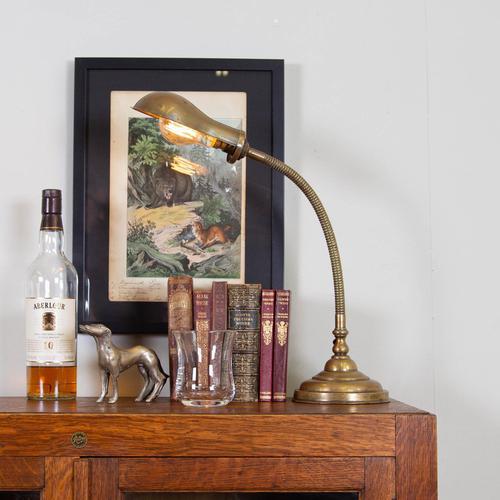 Good Brass Gooseneck Desk Lamp c.1915 (1 of 8)