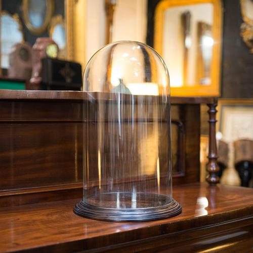 Antique Display Dome, English, Glass, Mahogany, Taxidermy, Showcase, Victorian (1 of 10)