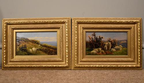 """Oil Painting pair by William Sidney Cooper """"Sheep in a Coastal Landscape"""" (1 of 6)"""