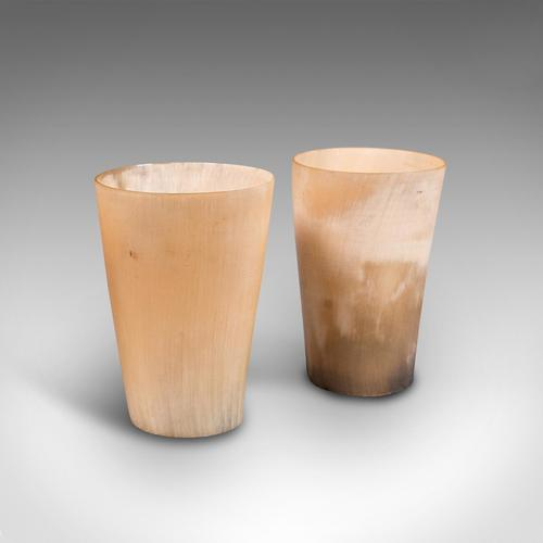 Pair of Antique Scrimshaw Cups, Welsh, Ram's Horn, Carved Tumbler, Victorian (1 of 12)