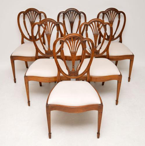 Set of 6 Antique Mahogany Sheraton Style Dining Chairs (1 of 9)