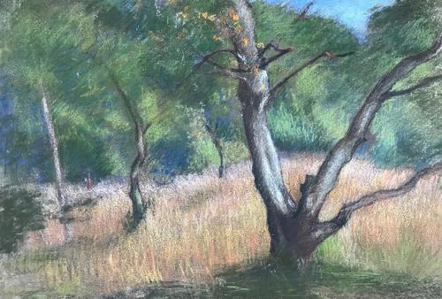 Original oil pastel 'Trees and a distant figure' by Dennis Gilbert NEAC. B.1922. From a studio collection (1 of 1)