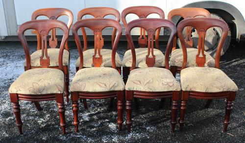 1900's Mahogany Set 8 Balloon Back Dining Chairs with Pop out Seats (1 of 3)