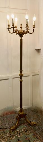 Rococo Gilt Brass Candelabra 6 Branch Floor Lamp, Standard Lamp (1 of 8)