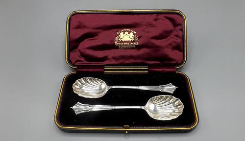 Pair of Silver Plated Victorian Wedding Spoons in Fitted Case (1 of 8)