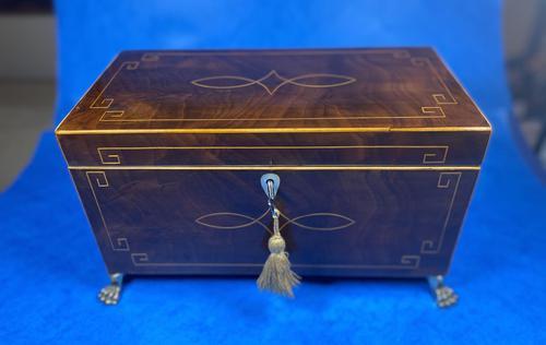 Regency Mahogany Twin Lidded Tea Caddy (1 of 17)