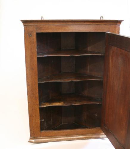 Georgian Oak Corner Cupboard of Small Proportion (1 of 3)