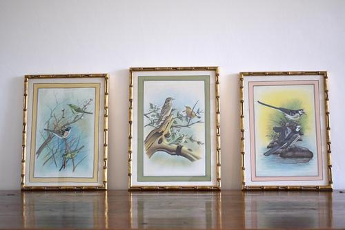 Set of Three Early 20th Century Silk Bird Paintings (1 of 10)