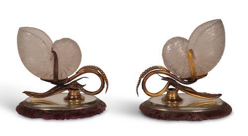 Mounted Nautilus Shells (1 of 3)