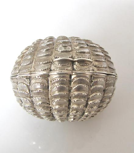 Stunning Victorian Silver Novelty Clam Shell Nutmeg Grater Hilliard & Thomason Birmingham 1874 (1 of 11)