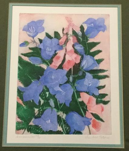 Winifred Packard Signed Coloured Etching of Campanulas (1 of 2)