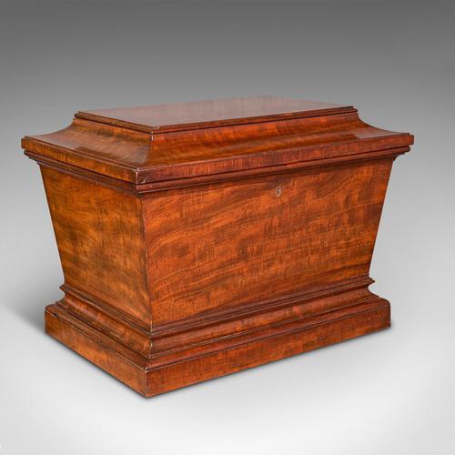 Large Antique Sarcophagus Cellarette, English, Mahogany, Wine Cooler, Regency (1 of 12)