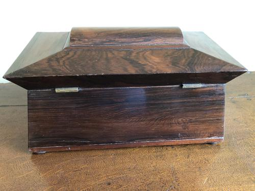 Large Rosewood William IV Sarcophagus Style English Tea Caddy (1 of 6)