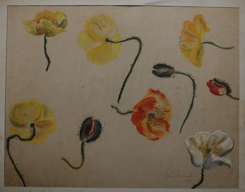 Flower Studies by Joan Warburton (1 of 6)