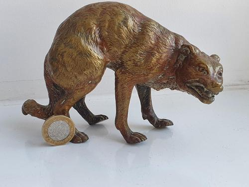 Early Large 20th Century Cold Painted Bronze of a Wild Dog (1 of 8)
