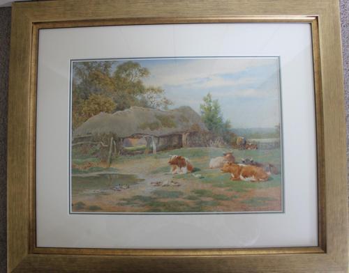Antique Original Watercolour - Cows Resting - Charles James Adams c.1900 (1 of 9)
