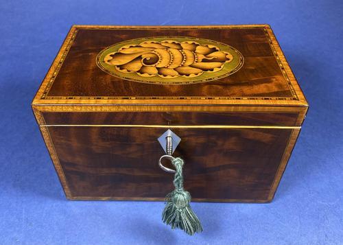18th Century Mahogany Twin Tea Caddy with Shell Inlay (1 of 17)