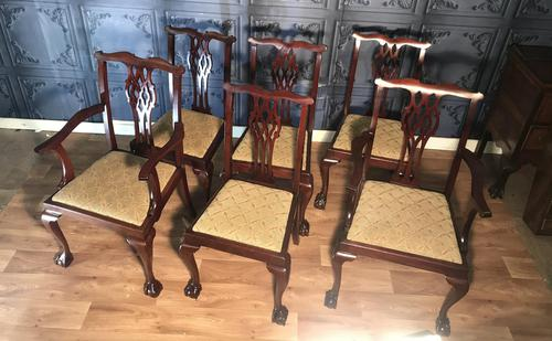 Set of six Edwardian Mahogany Dining Chairs (1 of 11)