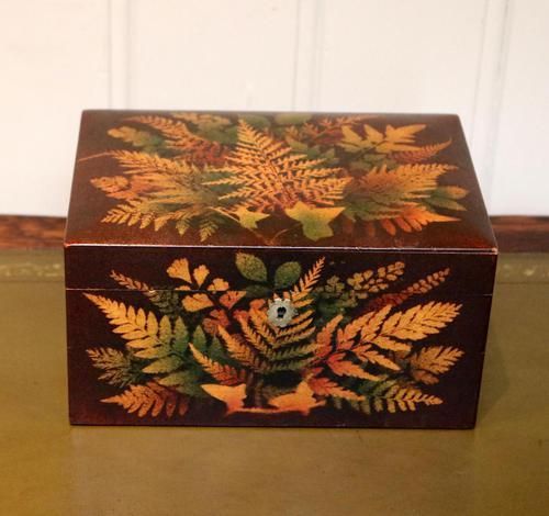 Mauchline Fernware Box (1 of 9)
