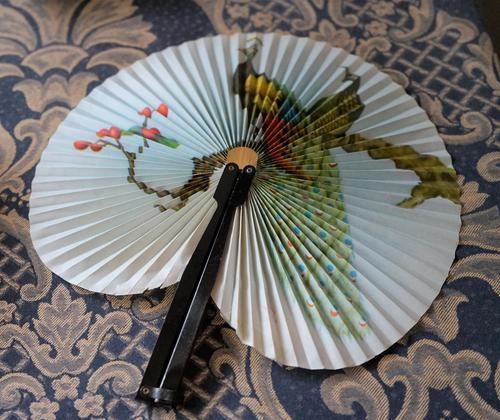 Unusual Vintage Black Framed Folding Fan - Ideal Gift (1 of 7)