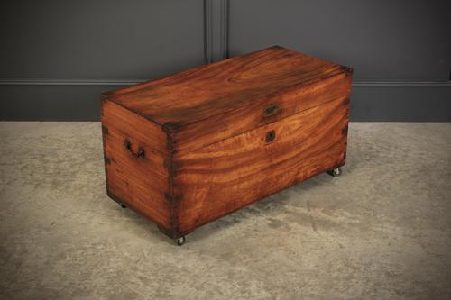 19th Century Military Camphor Wood Trunk (1 of 8)