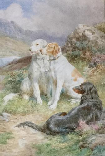 Basil Bradley Watercolour 'English, Irish & Scottish Setters on the alert' (1 of 3)