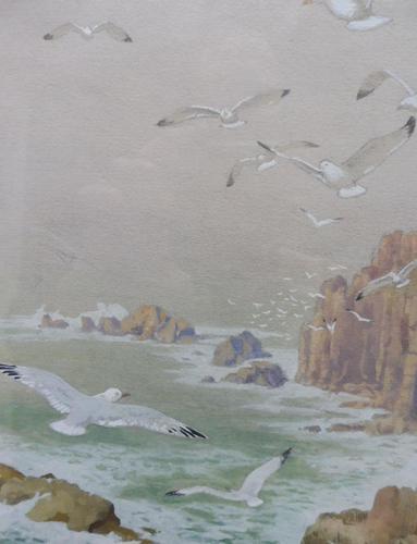 Watercolour Seagull seascape List Artist Noel Hubert Hopking (1 of 10)