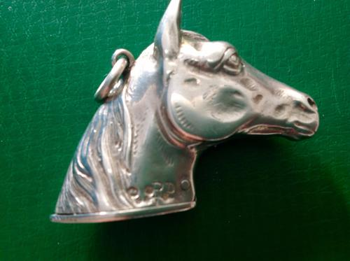 Antique Victorian Novelty Silver Vesta Case (1 of 1)