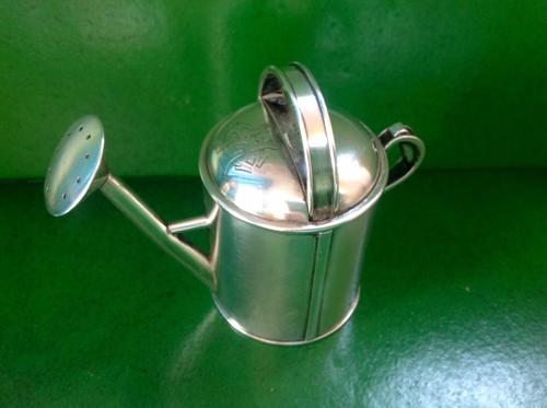 Antique Novelty Victorian Silver Pepperpot -1879 (1 of 4)