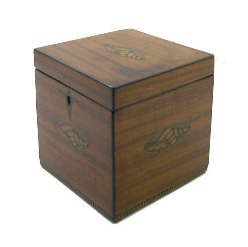 George III Shell Inlaid Satinwood Tea Caddy (1 of 6)