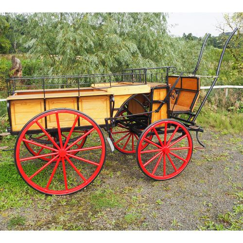 Fine Early 20th Century Horse Drawn Carriage (1 of 1)