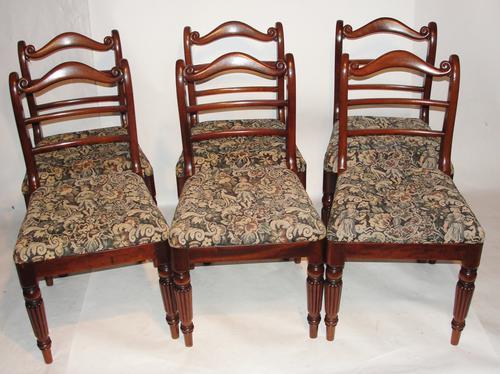 Set of 6 Georgian Mahogany Dining Chairs (1 of 1)