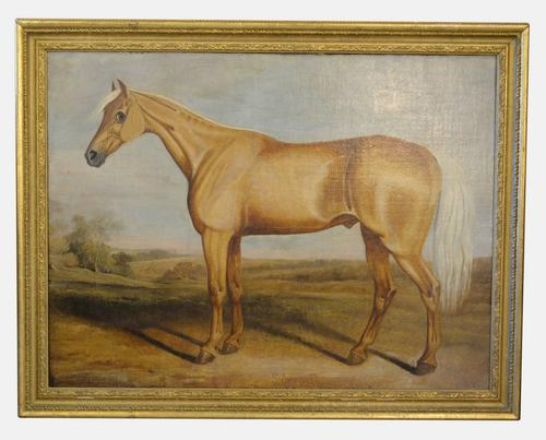 Oil Painting on Canvas Titled 'Silvertail' c.1820 (1 of 5)