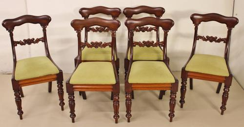 Set of 6 Early Victorian Mahogany Dining Chairs (1 of 1)