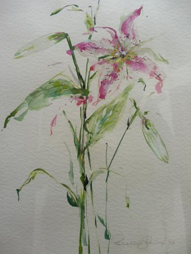 Watercolour Study of a Flower Artist Penelope Shewing (Free Shipping To Mainland England) (1 of 10)