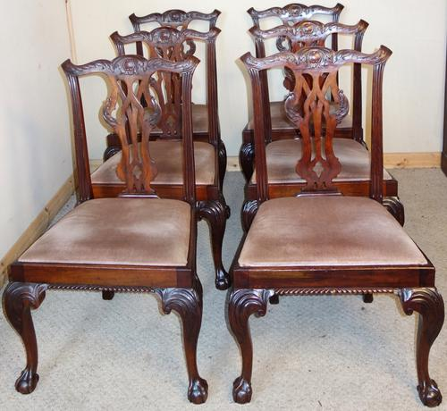 Set of Six Carved Mahogany Chippendale Style Dining Chairs (1 of 1)