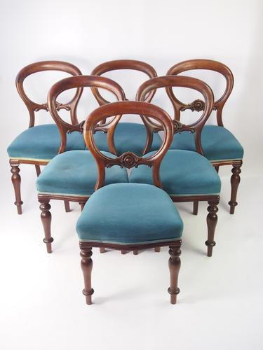 Set of 6 Antique Victorian Balloon Back Chairs (1 of 1)